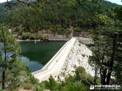 Pinares de la Angostura en Piedralaves;viajes mayo senderismo sierra madrid excursiones cerca madrid
